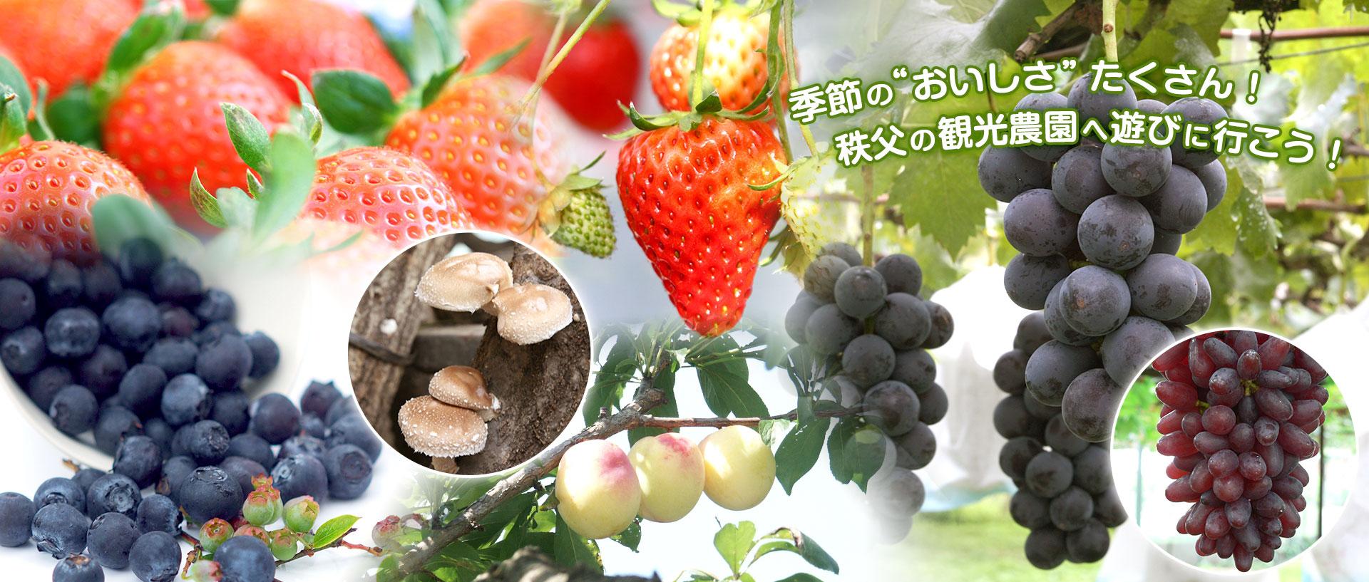 秩父観光農林業協会:メインイメージ
